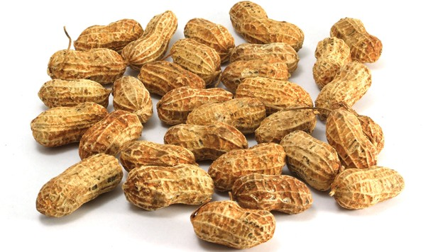 Skin Patch Shows Promise in Easing Peanut Allergy