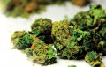 More U.S. Adults Using Marijuana