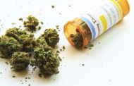 Medical Marijuana a Hit With Seniors