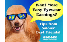 """""""Want More Easy Eyewear Earnings?"""" Online Training Available!"""