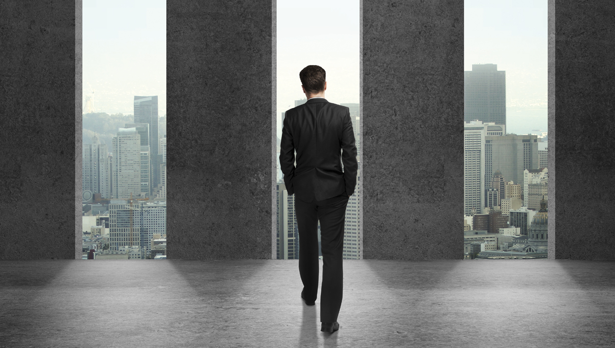 The 6 Pillars of Professional Power <br><h3> P.A.M.P.E.R. Your Way to Success </h3>