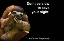 """Don't be Slow to Save Your Sight!"" NEW Salon Training Now Available!"